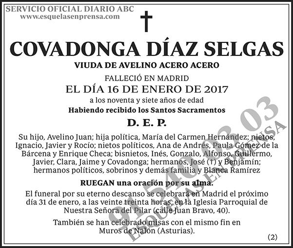 Covadonga Díaz Selgas